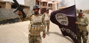 Iraq Feature: Iraqi Forces Claim Full Control of Fallujah