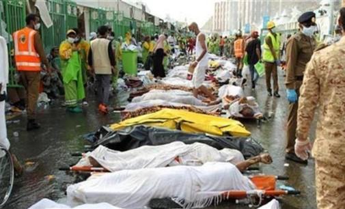 Iran Daily: Tehran Renews Criticism of Saudi Over Deaths of Pilgrims