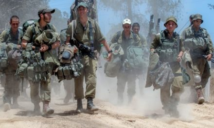 Israel & Gaza Daily, July 19: Death Toll Tops 300 as US Backs Netanyahu's Invasion
