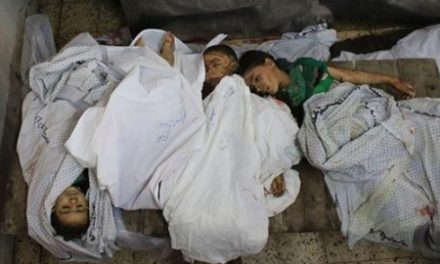 "Israel & Gaza Daily, July 20: Death Toll Passes 430 Amid ""Massacre"" in Shaja'ia"