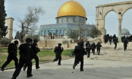 Israel-Palestine Daily, Nov 14: Israelis Lift Restrictions on Al-Aqsa Mosque for Friday Prayers