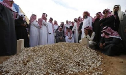 Saudi Arabia Analysis: How Stable is the Monarchy After King Abdullah's Death?