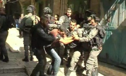 Israel-Palestine Feature: Tension Rises at Jerusalem's Temple Mount and Al-Aqsa Mosque