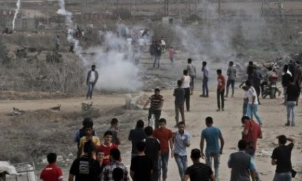 Israel-Palestine Daily, Oct 24: Almost 300 Palestinians Injured in Friday Protests