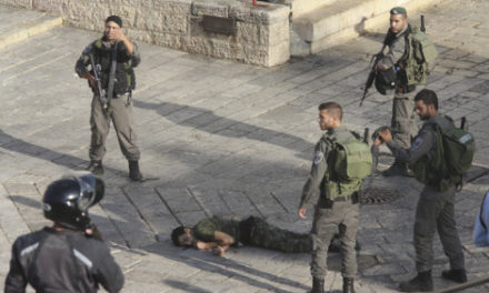 Israel-Palestine Feature: Deaths Rise on Both Sides in Jerusalem and West Bank
