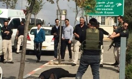"""Israel-Palestine Feature: 1 Palestinian Woman Killed, 1 Wounded in Latest """"Stabbing Attack"""" Incidents"""