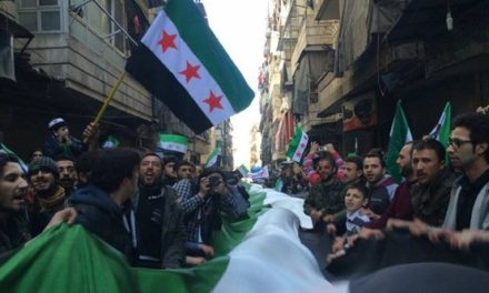 Syria Pictures: Protests for 2nd Friday in Row