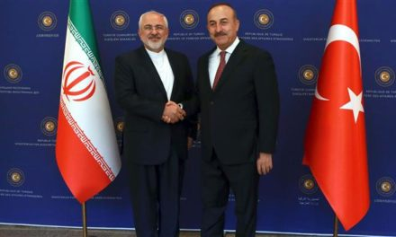 Iran Daily: Sudden Visit by Turkey's FM to Discuss Syrian Crisis