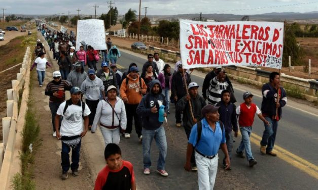Mexico Opinion: The Crises That Must Be Faced