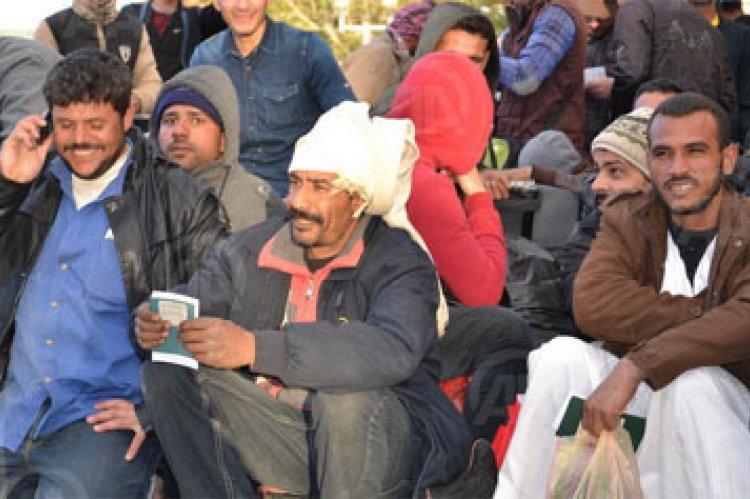 Egypt's Migrants and Diaspora Politics