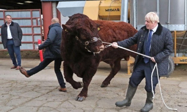 Has Boris Johnson Reached Dead End Over No Deal Brexit?