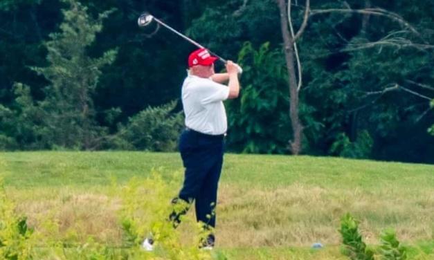 TrumpWatch, Day 1,255: Coronavirus — Pence Cancels Campaign Trips, Trump Plays Golf