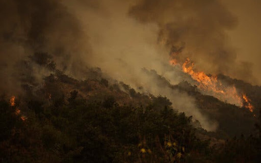 """TrumpWatch, Day 1,334: Biden v. """"Climate Arsonist"""" Trump on Wildfires and Climate Change"""