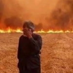 Assad Regime Executes 24 Over Forest Fires in Western Syria