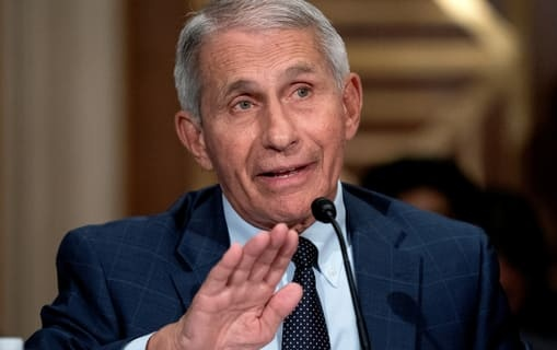 """Dr. Fauci Calls Out Sen. Paul's Coronavirus Disinformation: """"You Do Not Know What You Are Talking About"""""""